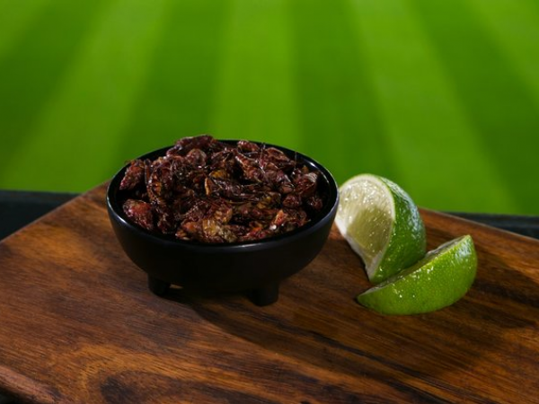 Get Your Fried Grasshoppers Here: The Big Hit At Mariners Home Games