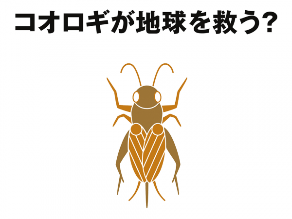 Eating Crickets To Save The World? Japanese Brand Muji's Insect-filled Crackers To Scurry Onto Shelves Next Year